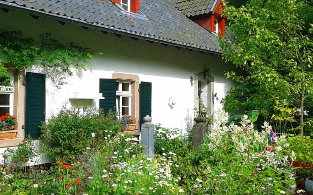 Cottage Gardens by Darren Mellor